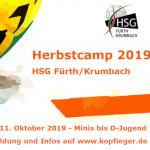 Handballcamp für Minis bis D-Jugend in den Herbstferien